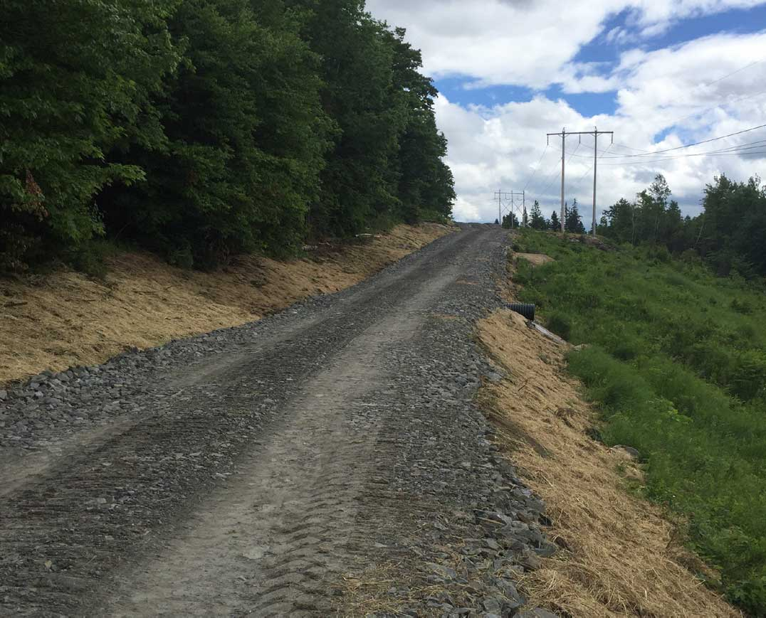 Stone Access Road
